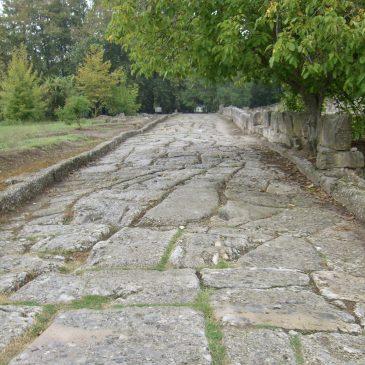 Dion, archeologie en politiek