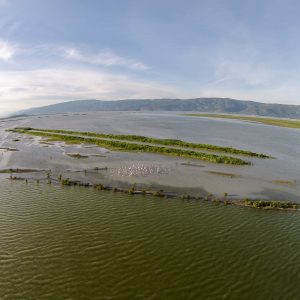 Foto: Karla-meer. Bron: ecotourism-greece.com. Bericht: Van water naar land, en weer terug. www.andergriekenland.nl