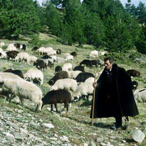 Bron: Tim Salmon flickr. Bericht: De Dhiava van de nomadische Grieken. www.andergriekenland.nl