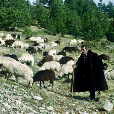 De Dhiava van de nomadische Grieken